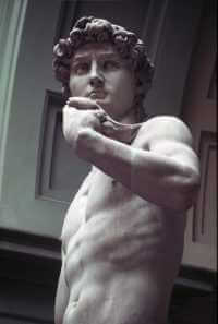 David by Michelangelo, Galleria dell'Accademia, Florence, 1501-04, photograph by Gloria Wilder